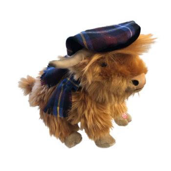Highland-Kuh, die Laute von sich gibt